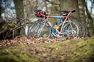 2016_Driedaagse De Panne-Koksijde_Stage2, Belgium loves bikes.