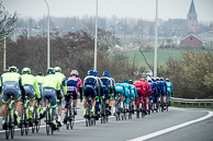 2016_Driedaagse De Panne-Koksijde_Stage3a, Peloton