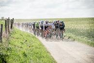 2016 Paris-Roubaix, Peloton, exiting Secteur 22, Capelle-Ruesnes,MarcoCOLEDAN((ITA-TFS), EliaVIVIANI(ITA-SKY)